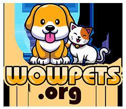 WowPets.org