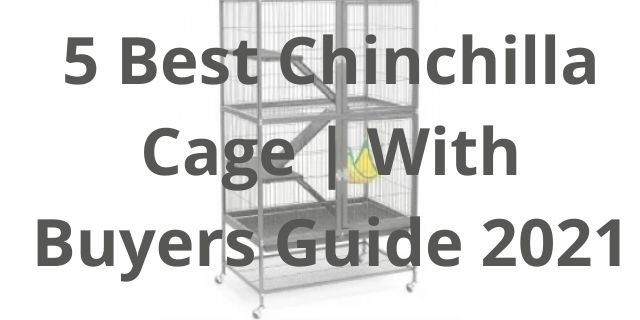 5 Best Chinchilla Cage | With Buyers Guide 2021