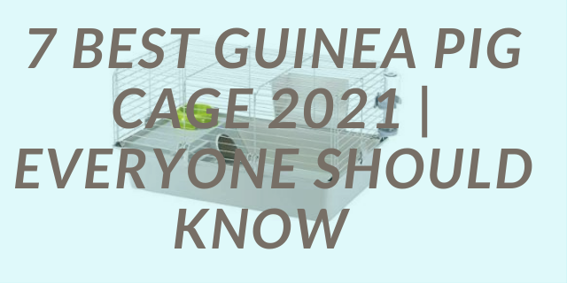 7 Best Guinea Pig Cage 2021   Everyone Should Know