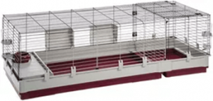 Best Guinea Pig Cage