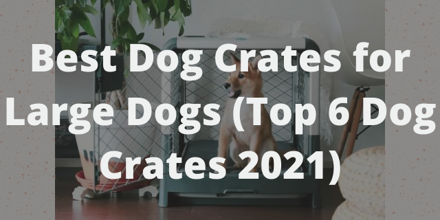 Best Dog Crates for Large Dogs (Top 6 Dog Crates 2021)