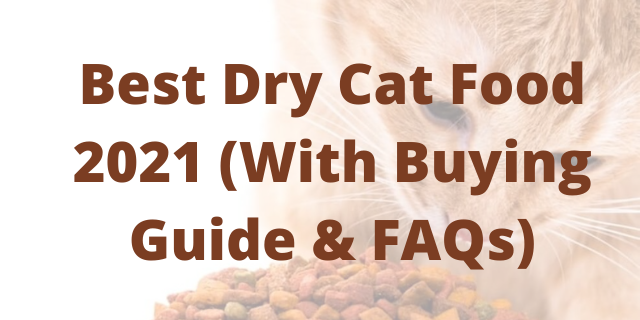 Best Dry Cat Food 2021 (With Buying Guide & FAQs)