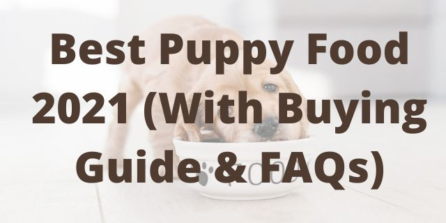 Best Puppy Food 2021 (With Buying Guide & FAQs)