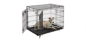 Best Dog Crates for Large Dogs-MidWest-Life-Stages-Folding-Metal-Dog-Crate-by-Midwest-Homes-for-Pets