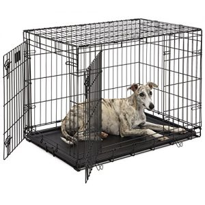 Best Dog Crates for Large Dogs