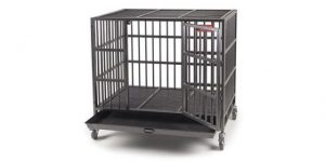 Best Dog Crates for Large Dogs-ProSelect-Empire-Dog-Cage-by-Proselect