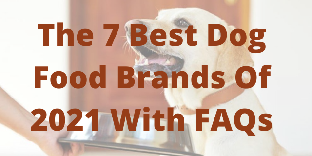 The 7 Best Dog Food Brands Of 2021 With FAQs