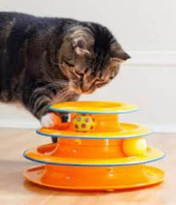Best Cat Toys- Tower of Tracks Cat Toy by Petstages