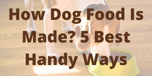 How Dog Food Is Made? 5 Best Handy Ways
