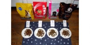 How Dog Food Is Made? 5 Best Handy Ways-Preference's method of making dog food