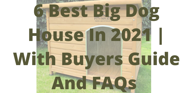 6 Best Big Dog House In 2021 | With Buyers Guide And FAQs