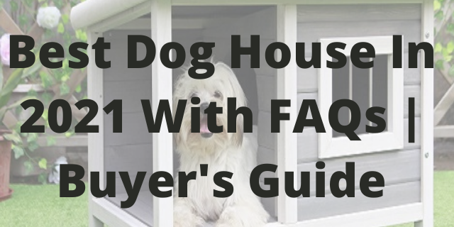 Best Dog House In 2021 With FAQs Buyer's Guide