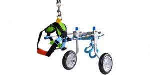 HiHydro Dog Cart Wheelchair