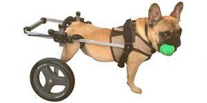 K9 Carts Original Dog Wheelchair