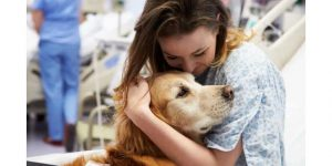 How To Convince Parents For Dog?Make your parents know the health benefits of having a pet dog