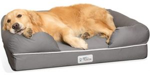 Best Dog Beds-PetFusion Ultimate Lounge with Solid Memory Foam Dog & Cat Bed