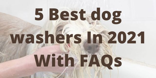 5 Best dog washers In 2021 With FAQs