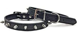 Best Spiked Dog Collars-Enjoying's spiked dog collar
