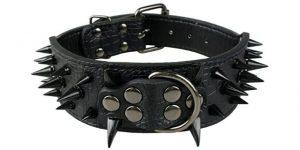 Best Spiked Dog Collars-Sharp spiked Beirui dog collar of Berry Pet