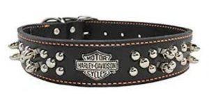 Best Spiked Dog Collars-Spiked dog collar of Harley-Davidson